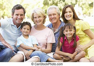esteso, portrait gruppo, di, famiglia, godere, giorno, parco