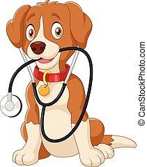 estetoscopio, perro, sentado, lindo