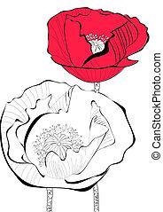 estilizado, amapola, flor, Ilustración