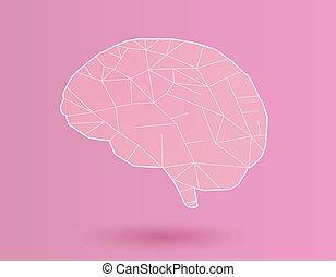 estilizado, cerebro, rosa, bg, ilustración, blanco