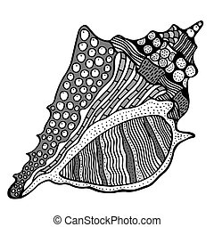 estilizado, shell., zentangle