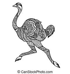 estilizado, zentangle, avestruz