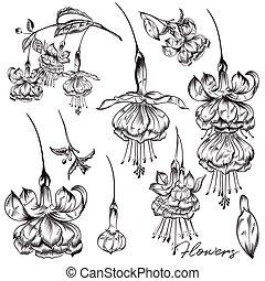 estilo, cobrança, mão, vetorial, desenhado, flores