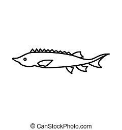 estilo, esboço, peixe, esturjão, ícone, fresco