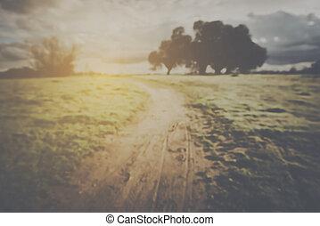 estilo, instagram, natureza, obscurecido, filtro, fundo