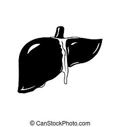 estilo, isolado, experiência., vetorial, pretas, fígado, human, branca, ícone