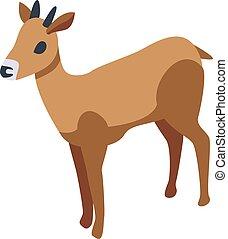 estilo, oryx, icono, isométrico, gacela