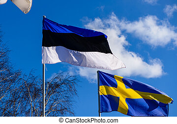 Estonia flag waving on the blue sky background