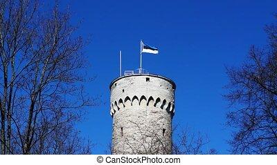Estonia flag waving on tower