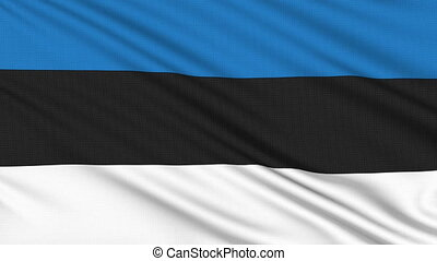 Estonia flag, with real structure of a fabric