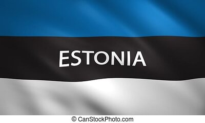 Estonia flag with the name of the country