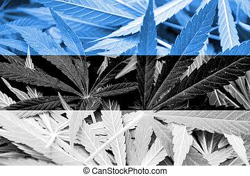 estonia läßt, auf, cannabis, hintergrund., droge, policy., legalization, von, marihuana