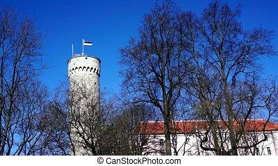 Estonian flag on historical tower