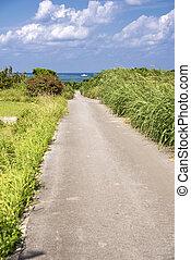 estrada, através, campo grama