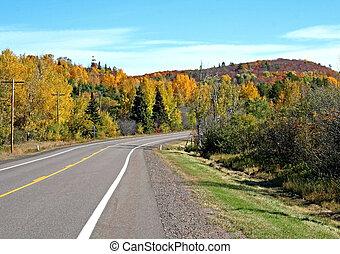 estrada, através, outono