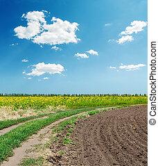 estrada, em, agricultura, campos, sob, céu azul, com, nuvens
