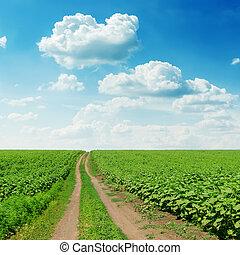 estrada, em, campo verde, sob, céu nublado