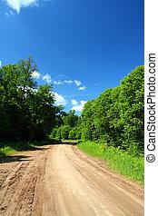 estrada rural, em, floresta