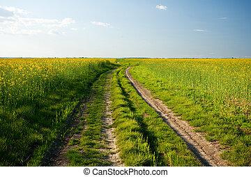 estrada rural, em, pôr do sol