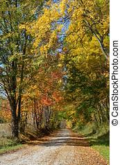 estrada rural, ligado, um, dia outono