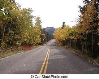 estrada rural, outono
