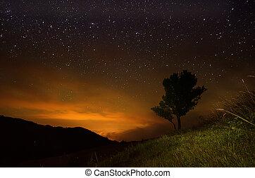 estrela, céu