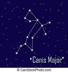 """"""", estrella, sky., canis, ilustración, major"""", vector, noche, constelación"""