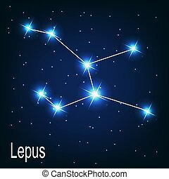 """estrella, sky., ilustración, vector, """"lepus"""", noche, constelación"""