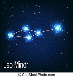 """estrella, sky., ilustración, vector, minor"""", noche, """"leo, constelación"""