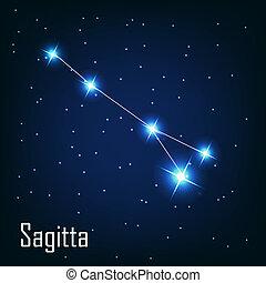 """"""", estrella, sky., ilustración, vector, sagitta"""", noche, constelación"""