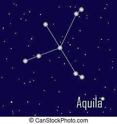 """estrella, sky., noche, ilustración, vector, """"aquila"""", constelación"""