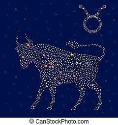 estrellado, encima, cielo, tauro, señal, zodíaco