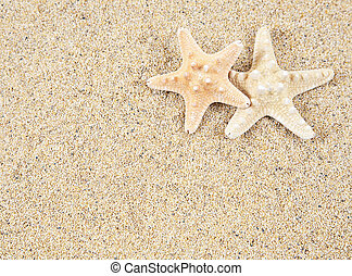 Estrellas de mar, espacio,  -, arena, copia, playa