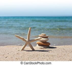 estrellas de mar, piedras, en, arena de la playa