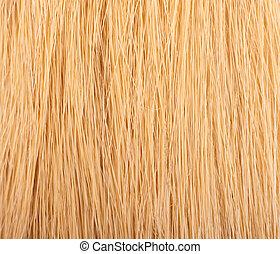 estructura, de, un, justo, hembra, pelo, de, pelo