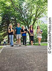 estudantes, andar, campus, feliz
