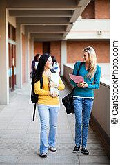 estudantes, andar, faculdade, jovem, campus