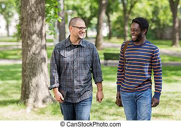 estudantes, campus universidade, comunicar