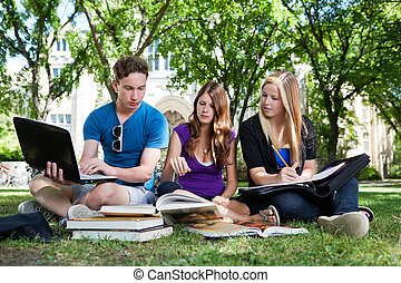 estudantes, estudar, agrupe