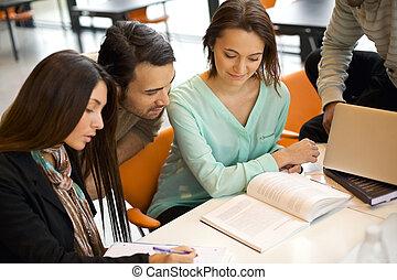 estudantes, estudar, grupo, biblioteca