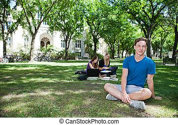 estudantes, faculdade, grupo, campus