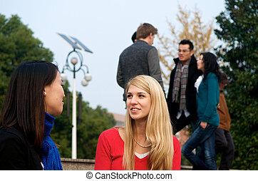 estudantes, falando, campus