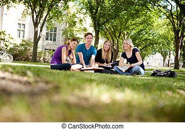 estudantes, grupo, feliz