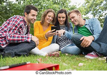 estudantes, parque, olhar, telefone, faculdade, móvel, feliz