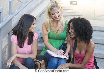 estudantes, passos, universidade, grupo, femininas