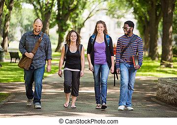 estudantes, universidade, andar, multiethnic, campus