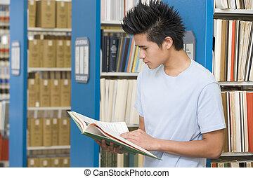 estudiante de la universidad, lectura, en, biblioteca