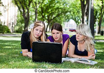 estudiantes, computador portatil, grupo