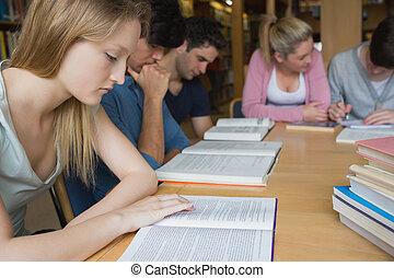 estudiantes, estudiar, como, un, grupo