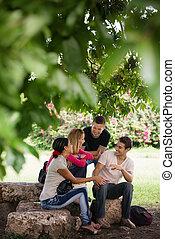 estudiantes, prueba, universidad, reunión, preparando